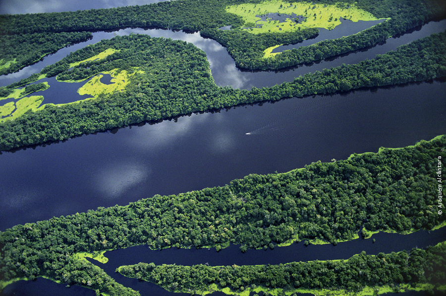 Fleuve Amazone et forêt Amazonienne: une richesse pour la biodiversité